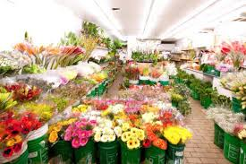 florists in the best florists in toronto