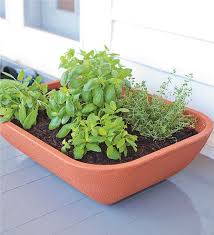 herb garden planter double walled self watering herb garden planter self watering planters