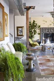 Fern Decor by Fern Houseplant Trend Fern Trend In Home Decor