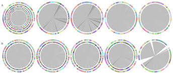 cisa contig integrator for sequence assembly of bacterial genomes