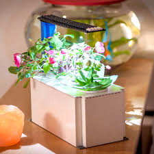 diy indoor garden kit click u0026 grow