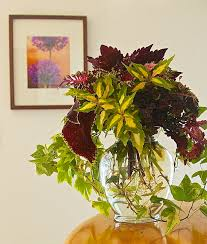 Cascading Indoor Plants by Container Gardening Plants Water And Winter Plants