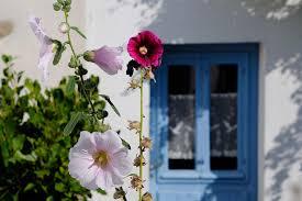 chambre d hote ile d houat visiter houat et hoëdic îles bretagne sud tourisme bretagne
