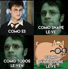 memes harry potter cerdo potter wattpad harry potter and memes