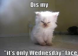 Funny Memes About Wednesday - kickass funny wednesday meme