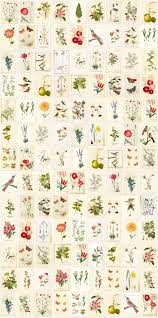 49 best behang images on pinterest wallpaper fabric wallpaper 49 best behang images on pinterest wallpaper fabric wallpaper and home