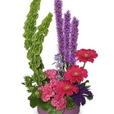 florist greensboro nc blossoms by stroud florist get quote florists 5834 a high