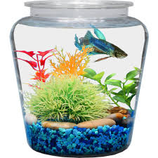 Goldfish Bowl Vase Fish Bowls