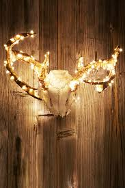 lights that don t need to be plugged in firefly battery powered string lights the fact they don t need to be