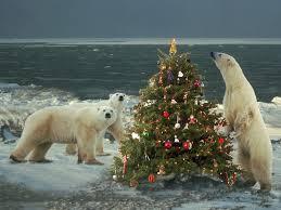 white fiber optic christmas tree sale christmas lights decoration