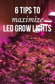 best led weed grow light 138 best led grow lights images on pinterest led grow lights grow