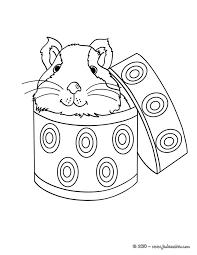 coloriages coloriage d u0027un cochon d u0027inde dans une boîte fr