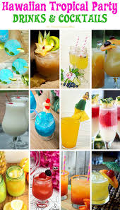 50 recipes for a hawaiian tropical party tropical party recipes