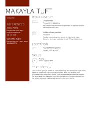 Job Shadowing Resume by Underwriter Resume Samples Visualcv Resume Samples Database