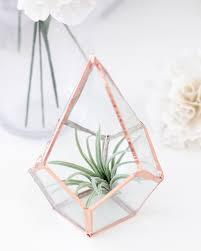 diy glass terrariums u2013 why don u0027t you make me