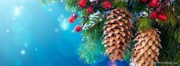 Christmas Tree Pine Cones Facebook Cover  Holidays