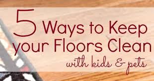 shoes for dogs hardwood floors wood floors