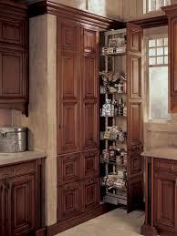 kitchen organizer kitchen organization storage pantries for an