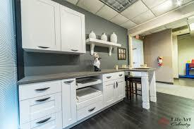 Kitchen Art Cabinets 1 Jpg