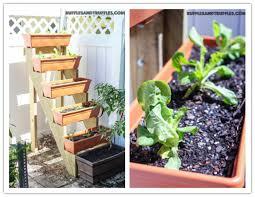 diy vertical herb garden how to build a diy vertical herb garden planter 512x3961 michelle