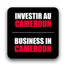 bureau veritas cameroun investors room gas the information