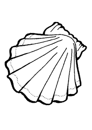 printable seashell coloring pages 13756 bestofcoloring com