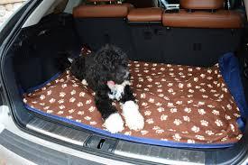 Dog Blankets For Sofa by Amazon Com Best 100 Waterproof Fleece Pet Throw Dog Blanket