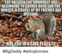 Squirrel Nuts Meme - i ve noticed the squirrels are beginning to gather nuts for the