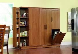 sauder kitchen storage cabinets amazon com sauder homeplus basic storage cabinet sienna oak
