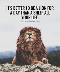 25 lion quotes ideas quotes style vote