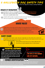 Halloween Cubicle Decorating Contest Flyer by Pet Safety Archives Flipflop Dogs