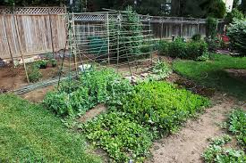 tips for planning a vegetable garden layout on craftsy