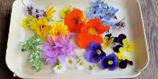 flowers edible edible flower recipes tulips roses and herbs great chefs