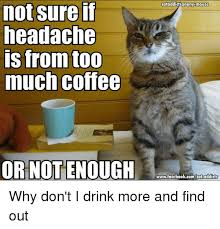 Too Much Coffee Meme - not sure if headache is from too much coffee or not enough