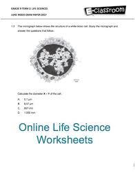 54 best worksheets images on pinterest worksheets