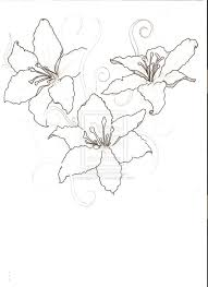 small lily flower tattoos lily outline google search beez dezigns pinterest tattoo