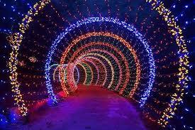 holiday houses illuminate the season of giving