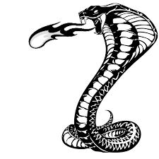 snake face clipar clip art library