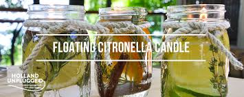 FLOATING CITRONELLA CANDLES–$