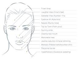 consultation form makeup artist bridal contract template where can toxin be used