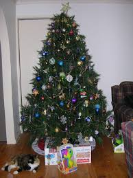 fixing christmas tree lights christmas tree competition fb the riotact