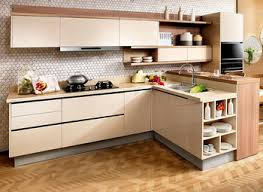 Kitchen Cabinets Buy by Solid Wood Kitchen Cabinets Blum Ecodrill Kitchen Door Hinge Yeo Lab