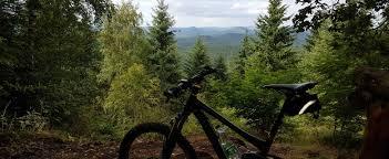 Bad Bergzabern Die 10 Schönsten Mountainbike Touren In Bad Bergzabern Komoot