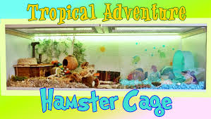 Hamster Cages Cheap Tropical Adventure Hamster Cage Theme Hamsters Pinterest