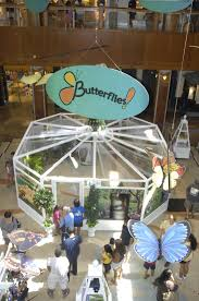 Woodland Hills Mall Map Butterflies Shops At Willow Bend Conservatory Tour