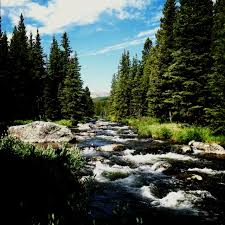 Wyoming travels images 425 best wyoming images wild west wyoming vacation jpg