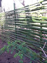 77 best vegetable garden fence images on pinterest bamboo