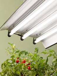 T5 Light Fixtures For Sale by High Intensity Grow Light Fixture With Three T5 Bulbs Gardeners Com