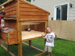 Backyard Chickens Forum by Google Image Result For Http Www Backyardchickens Com Forum