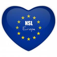 The European Flag Nsl At The European Parliament
